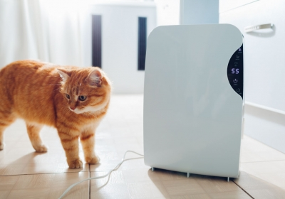 the-homelife-The-Benefits-of-Smart-Dehumidifiers