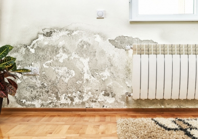 the-homelife-Damp-Proofing-Ideas-for-your-Home