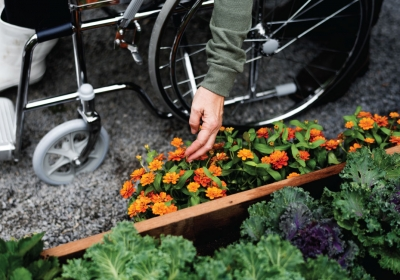 the-homelife-Gardening-Made-Practical--For-Those-With-Disabilities